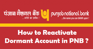 How to Reactivate Dormant Account in PNB